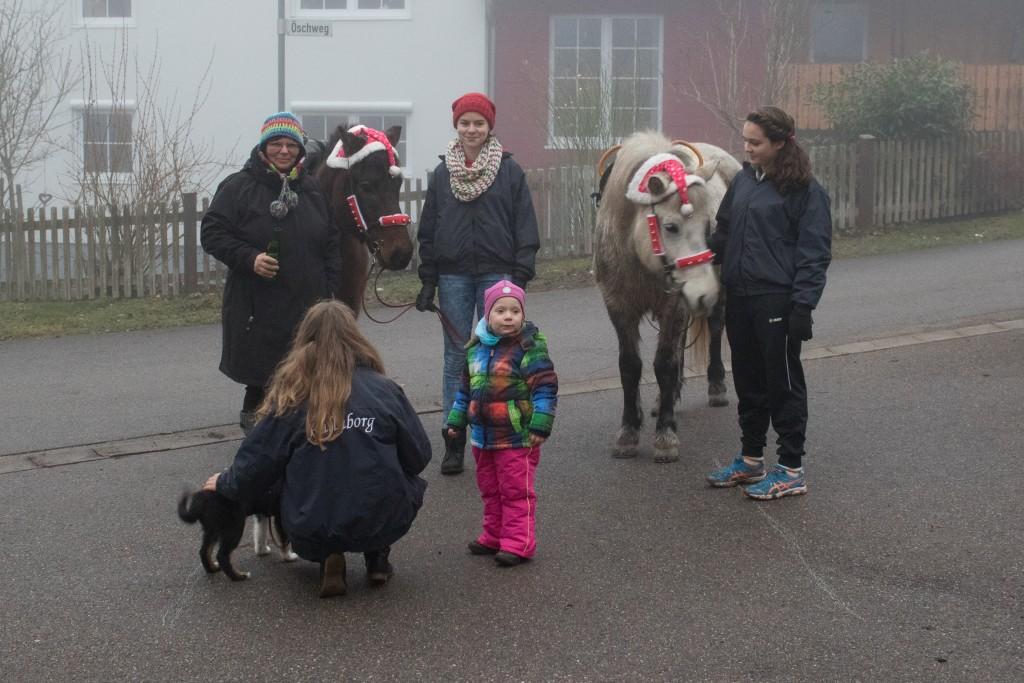 Das Team von Fjallaborg mit den beiden Ponys